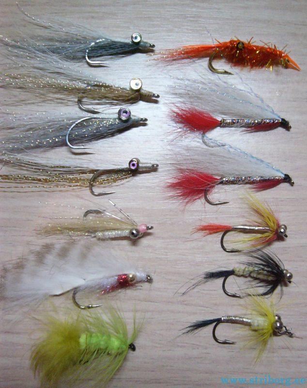 какую рыбу ловят в мае