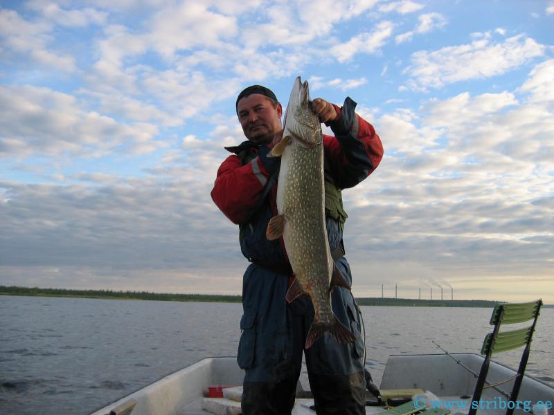 что вслед за рыбная ловля  получи и распишись нарвском водохранилище