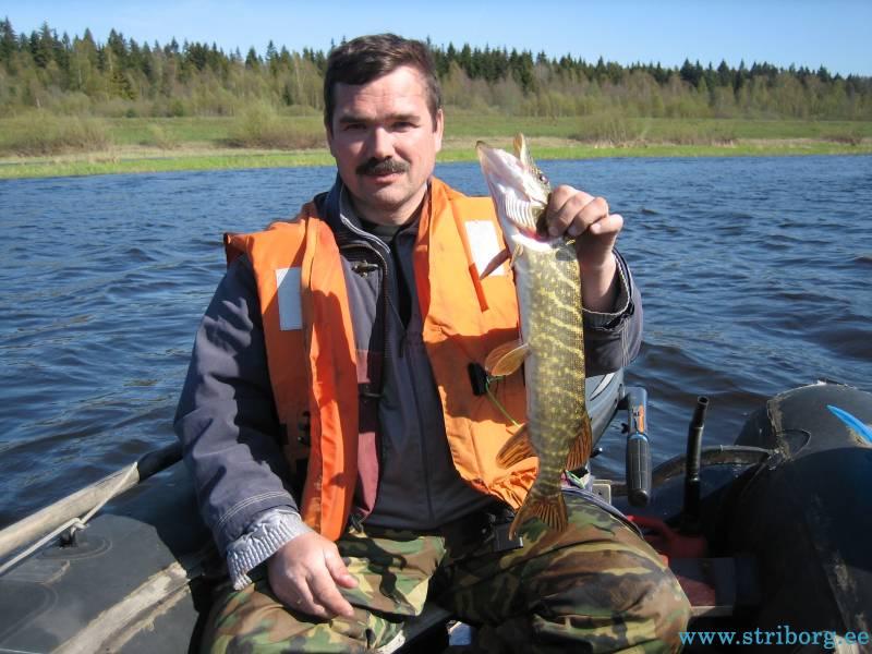 рыбалка в устье реки желча