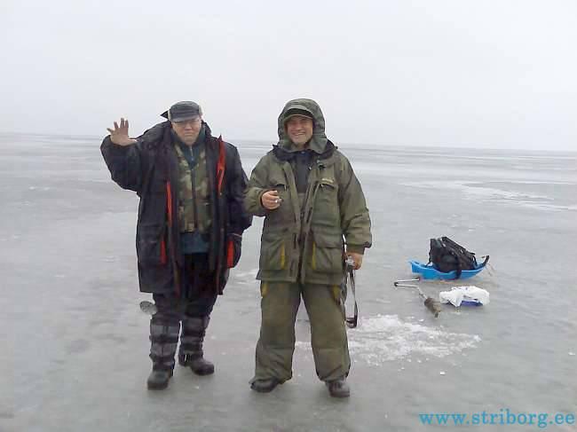 клев на чудском озере прогноз